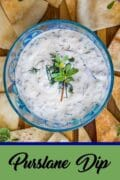 purslane dip recipes pin