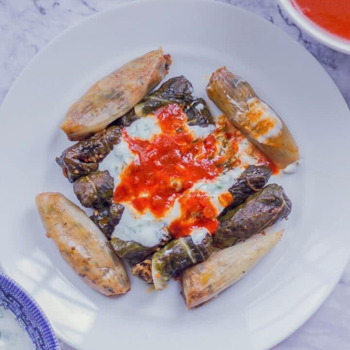 swiss chard dolma with yogurt and sauce