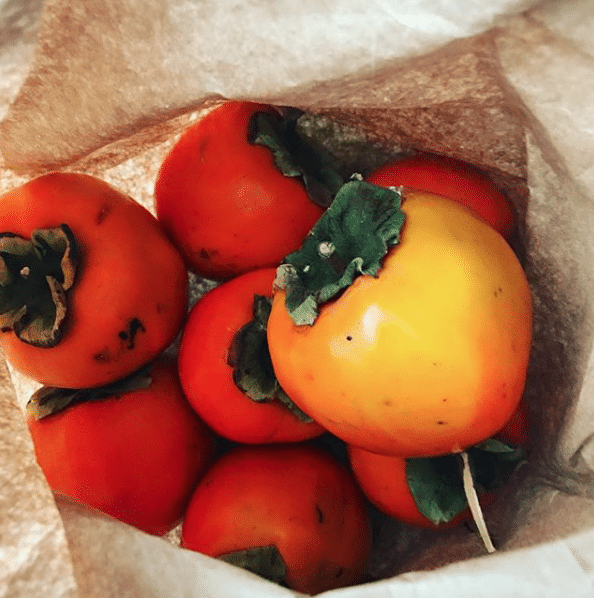 persimmons in a bag