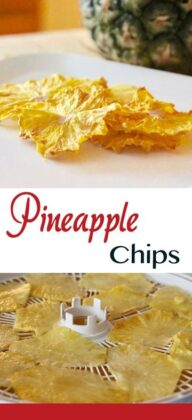 pineapple chips pin