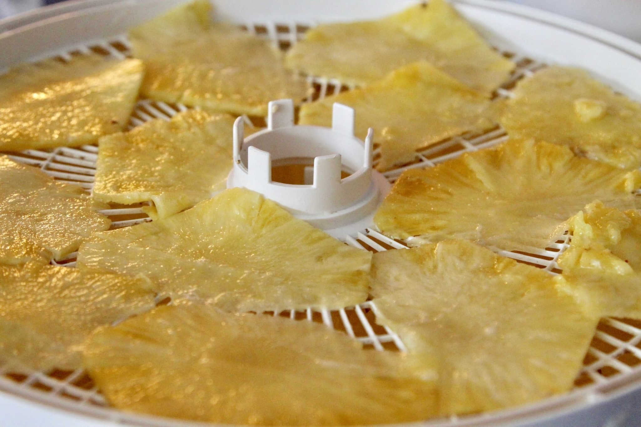 pineapple slices on dehydrator trays