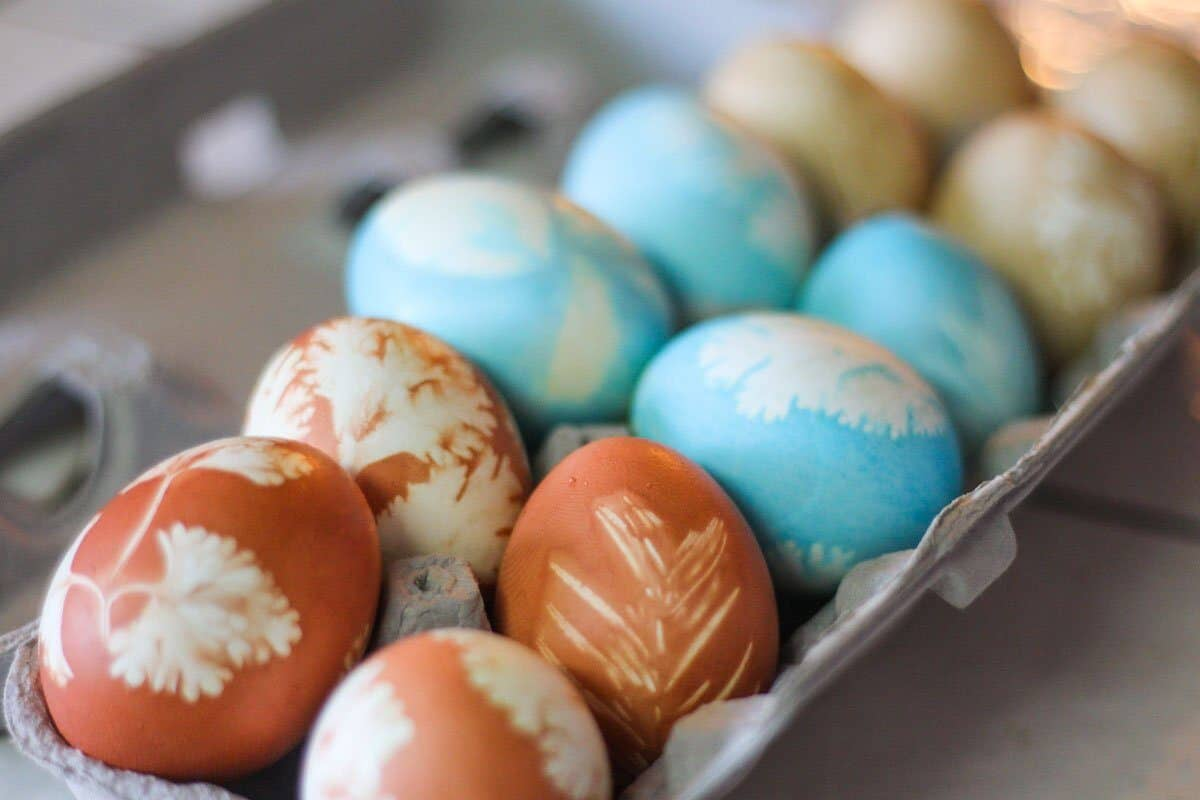 Natural Egg Dye used to dye Easter eggs in carton