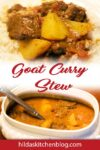 Goat Curry Stew pin