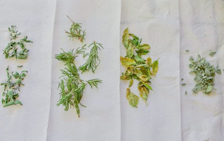 herbs drying on a papertowel