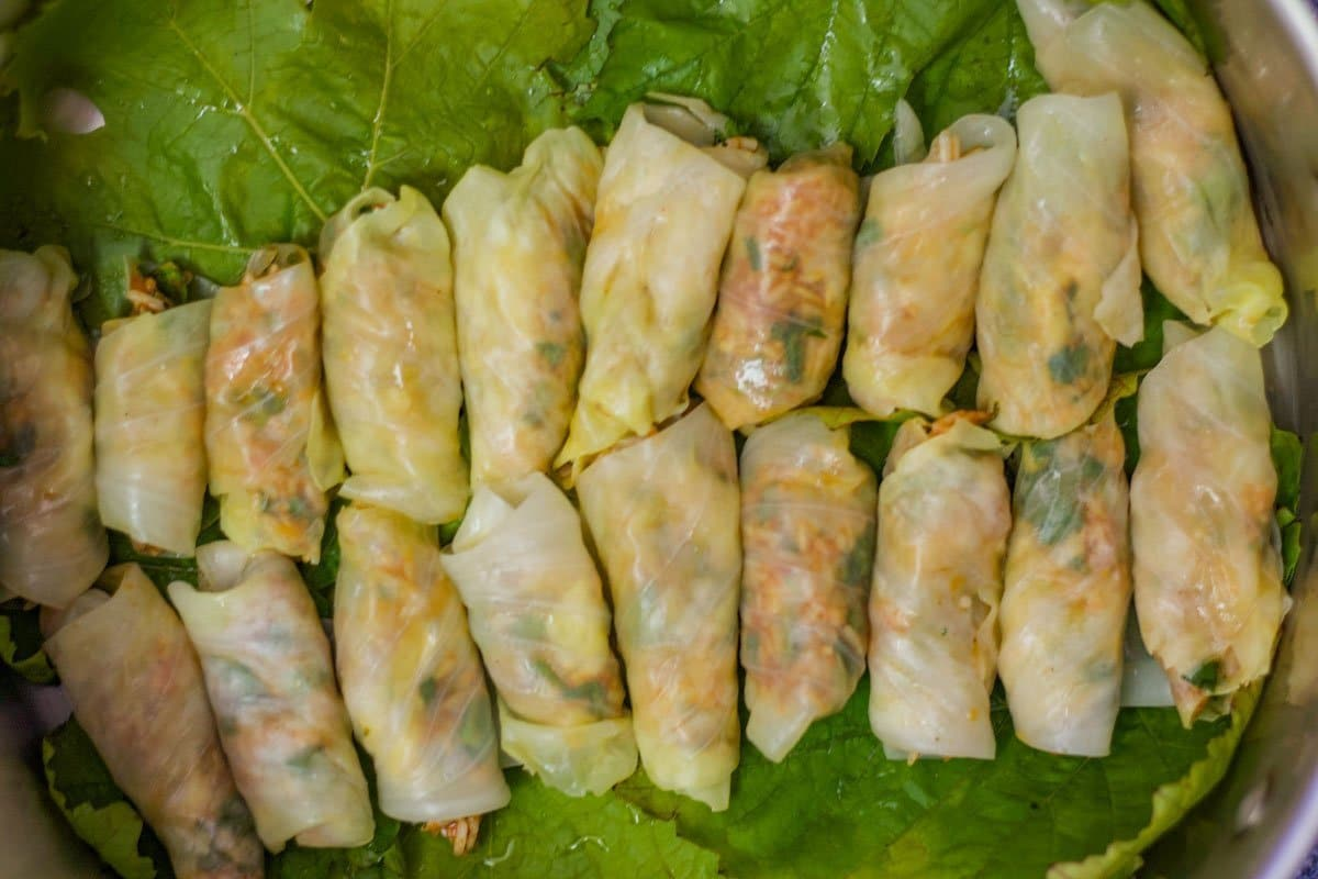 cabbage rolls in a pot