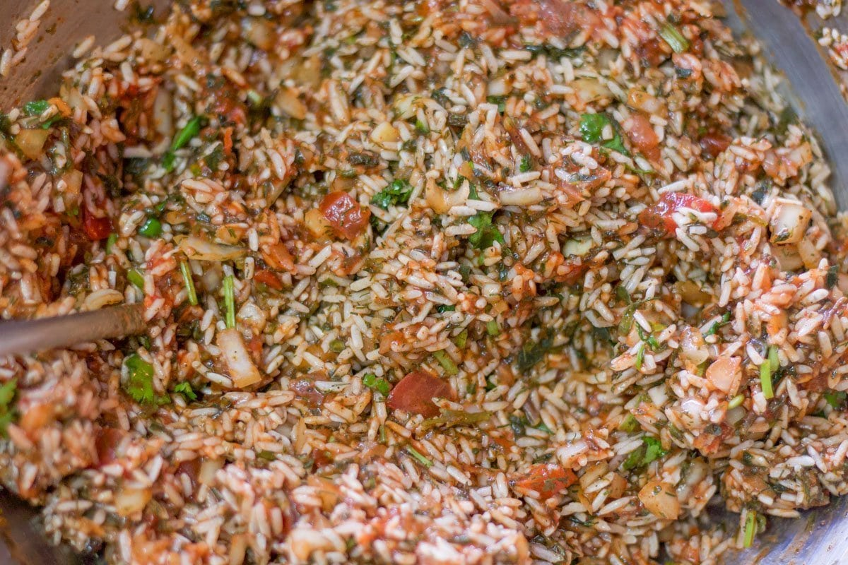 rice and tomato mixture