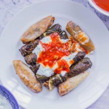 swiss chard dolma recipe