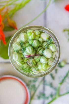 nasturtiums pickled