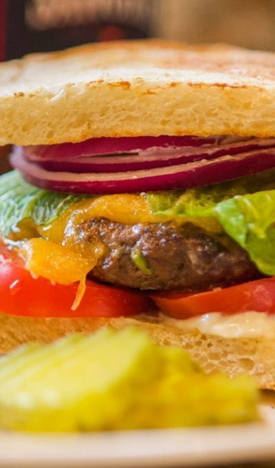 Gourmet Elk Burger Recipe
