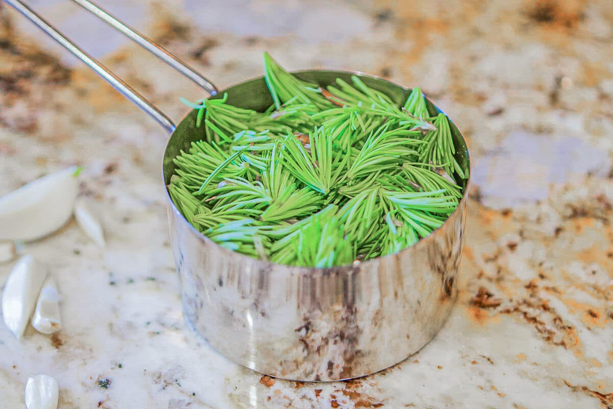 spruce tips in a measuring cup