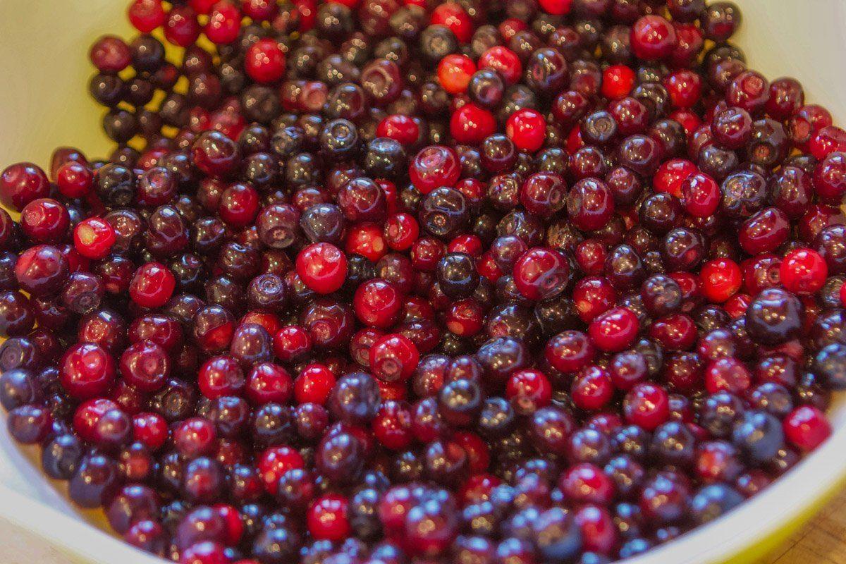 huckleberries for berry jam