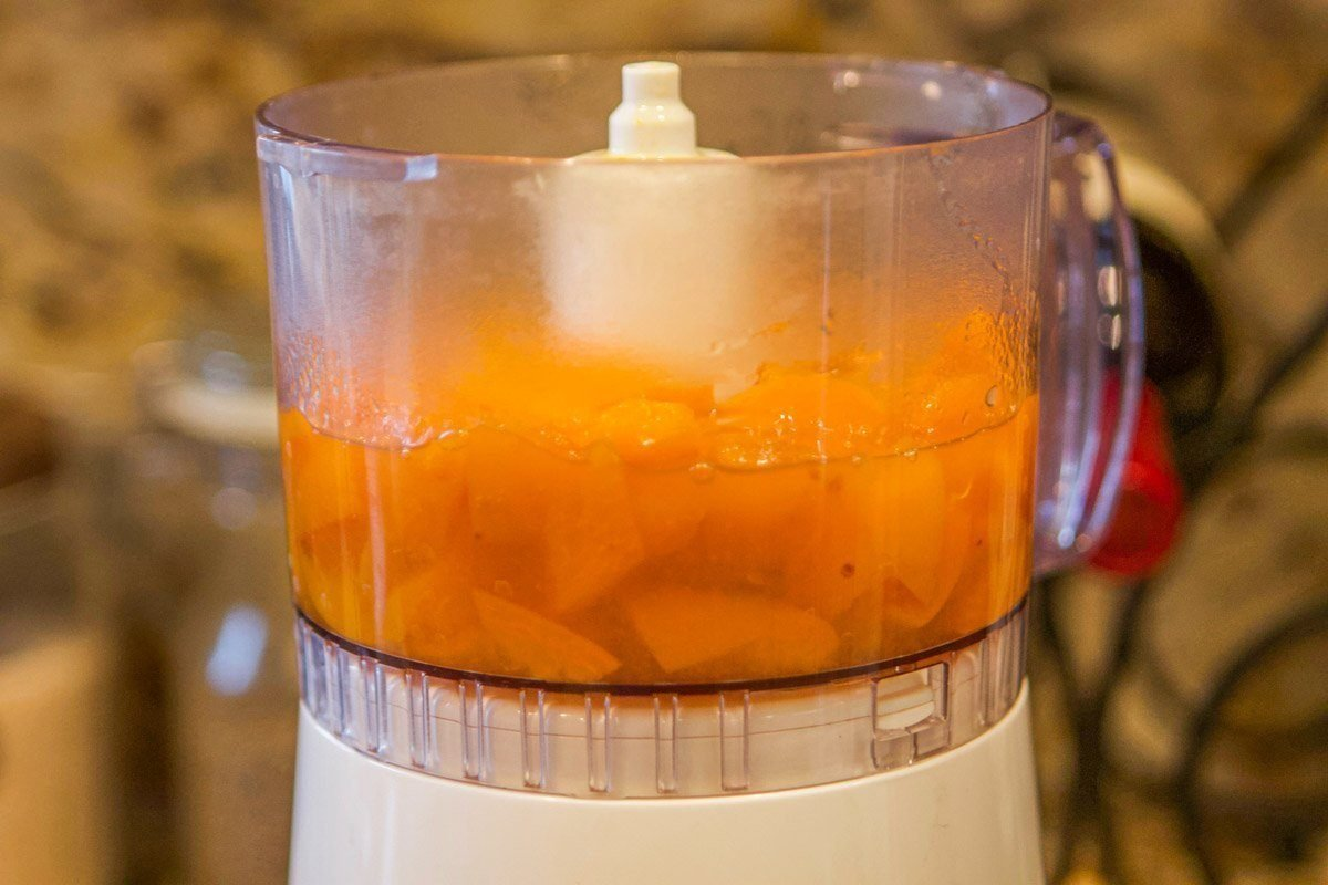 apricots in a blender