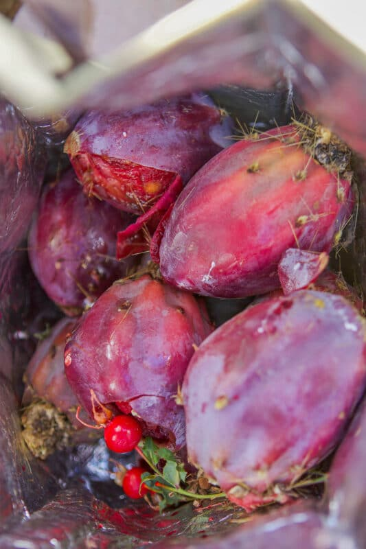 prickly pears in a bag