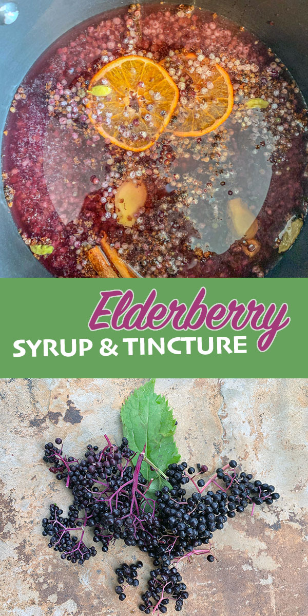 elderberry syrup and tincture pin