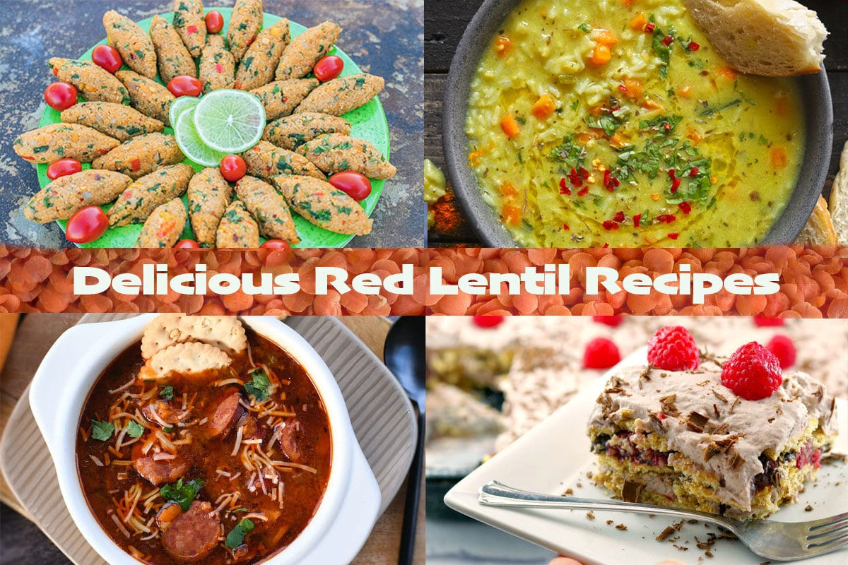 red lentil recipes