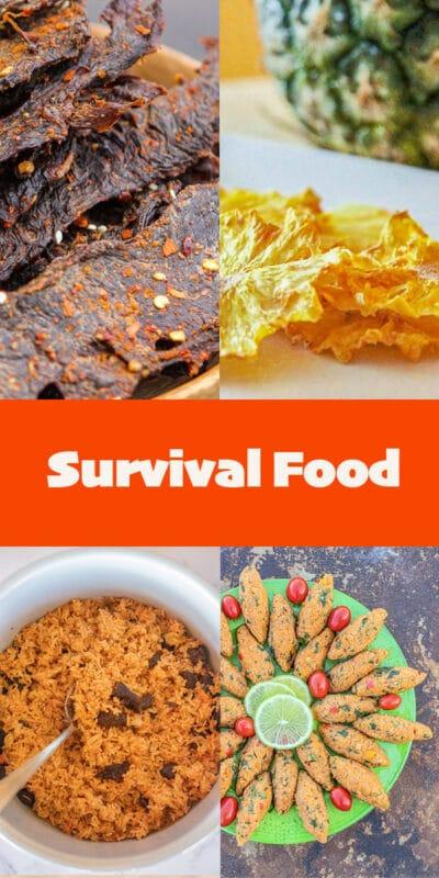 survival food pin