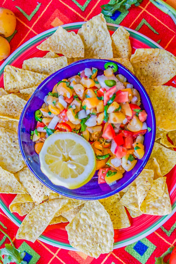 loquat salsa and chips