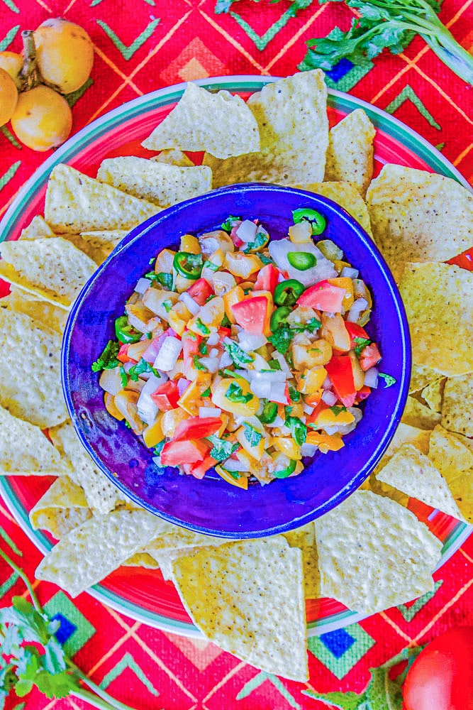 salsa in a blue bowl with chips