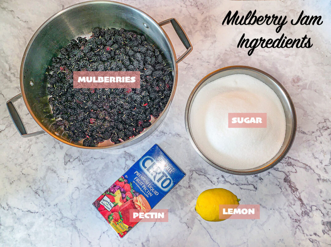 labeled mulberry recipe ingredients