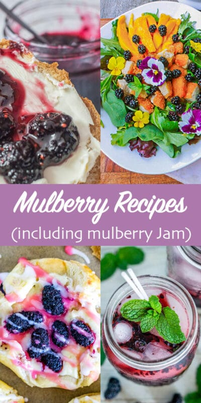 mulberry recipes pin
