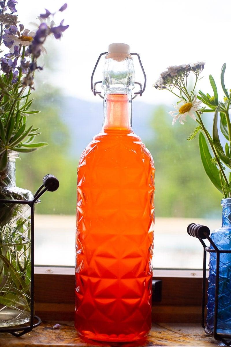 rhubarb gin in a bottle in the window