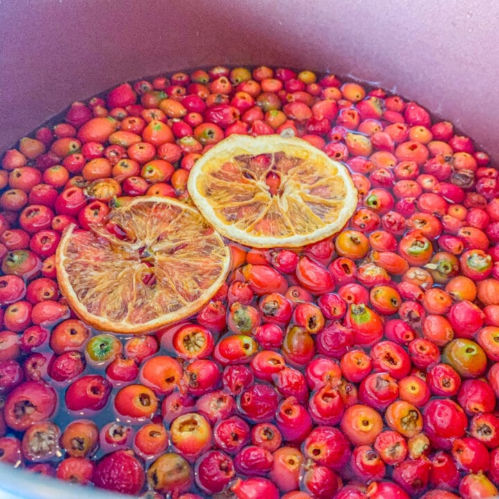 rosehips and orange slices in a pot