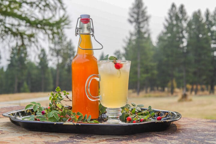 rosehips syrup and drink on a tray in the wilderness