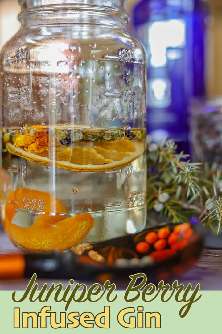 a jar with infused gin with juniper berries in the background