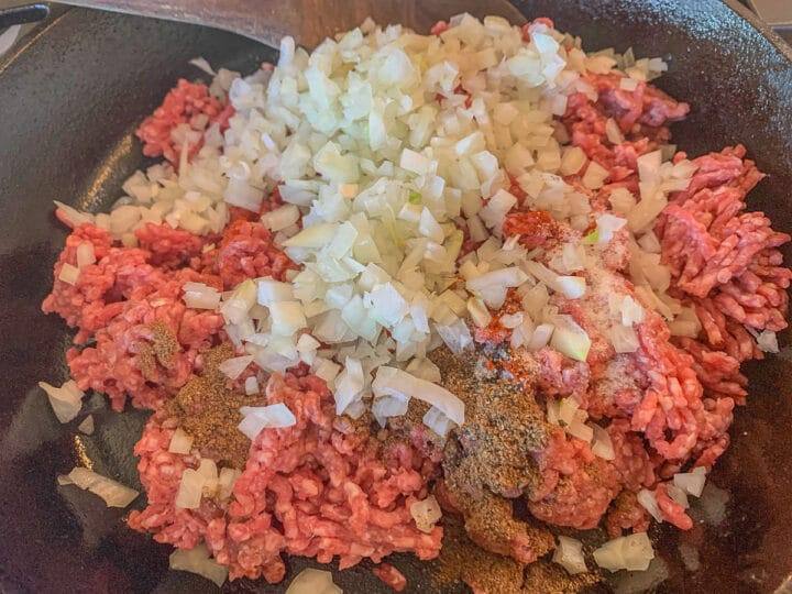 ground beef topped with minced onion and spices