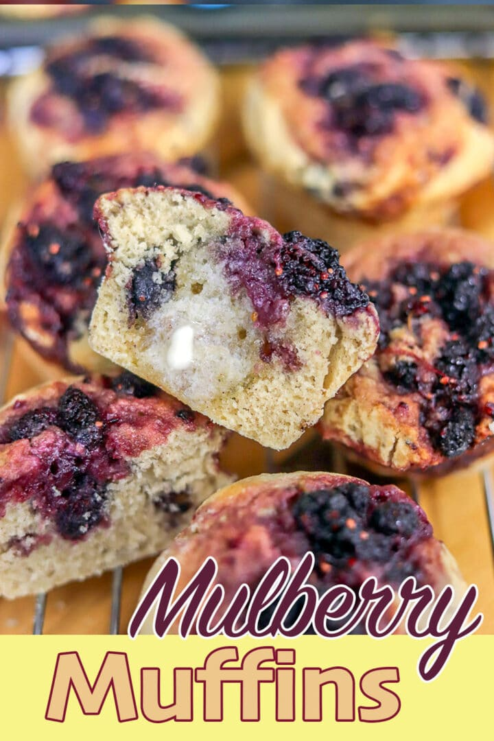 mulberry muffins pin