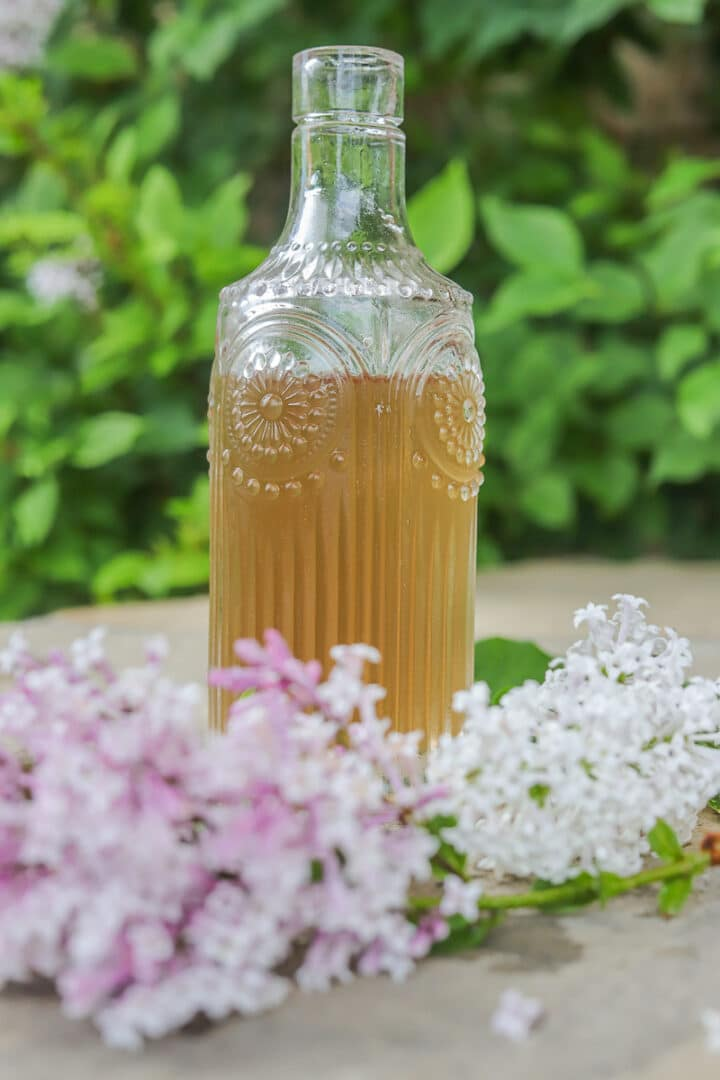 lilac syrup in bottle with lilacs around it and a bush behind it