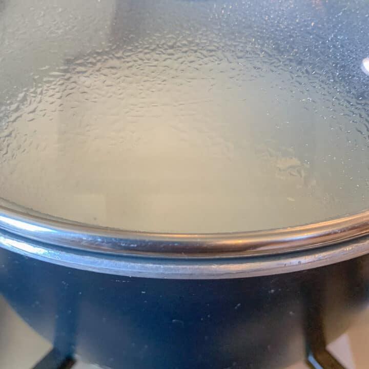 pot of yogurt rice