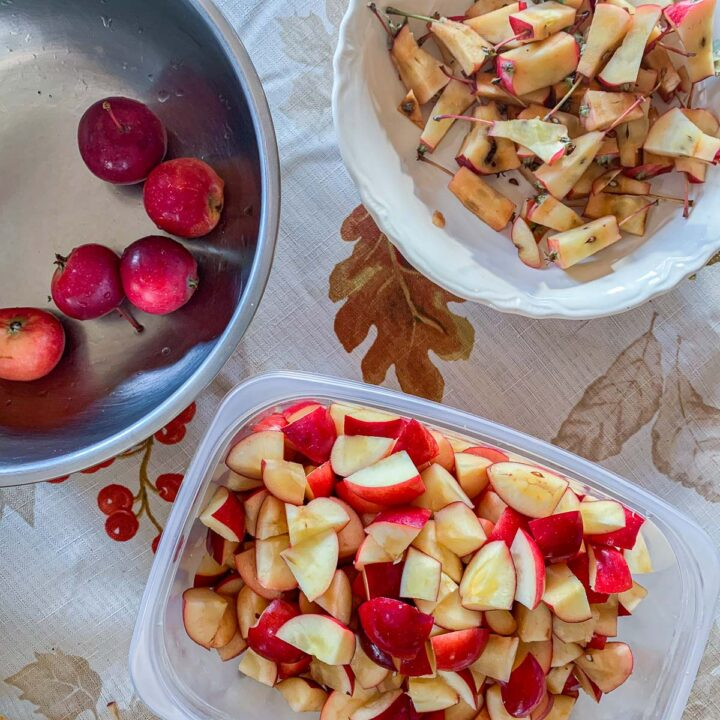 chopped crab apples in one container, with apples, and pits in two other containers